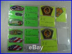 Boy Scouts of America Council Shoulder Patches Dan Beard #438 86 Lot 160-40H