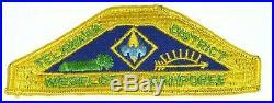 VINTAGE BOY SCOUT BSA PATCH Telewana DISTRICT Webelos Camporee Nassau County