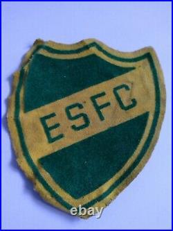 VINTAGE BOY SCOUTS RARE PATCH ESFC EAGLE SCOUT FORESTRY CORP 1940's